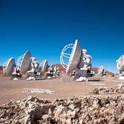 """מאמר אחרון שפורסם ע""""י פרופ' שרה בק, נבחר כזרקור מדע ע""""י מצפה הכוכבים ALMA"""