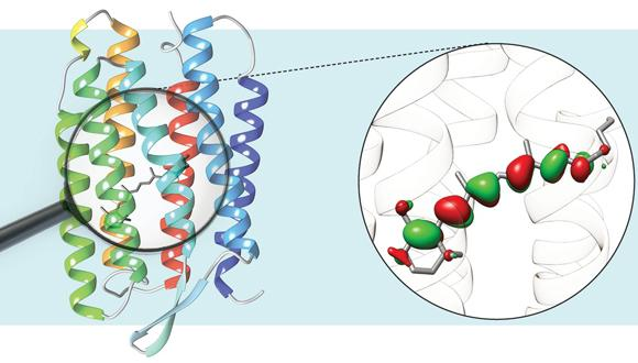 Frontiers in Multiscale Modelling of Photoreceptor Proteins