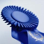פרסים ומענקי מחקר ייחודיים